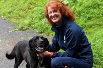 Twelve-year-old Labrador 'Millie' searching for a new forever home